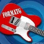 FormatG