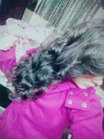 Sadhna Sharma*