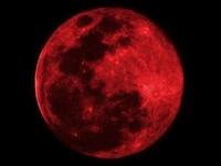 CrimsonNightmare13