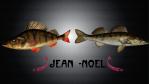 jean noel