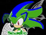 Shadic The U.Hedgehog