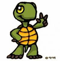 turtleire