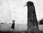 Galería de los usuarios 19543-36
