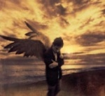 Angel™