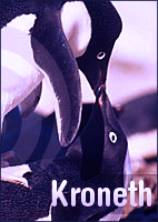Kroneth