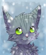 Blackcat^^
