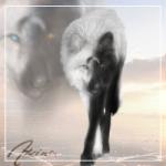 Akira-White-Wolf