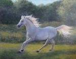 horsefreak