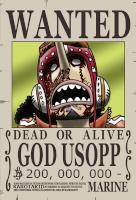 Ussopp