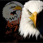 Comando Aguilucho 1-95