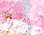 Sakura Hitaki