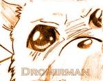 Dromirman