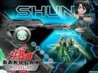 Master Shun