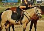 mimi-poney