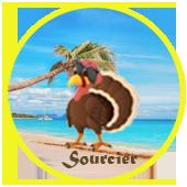 Sourcier