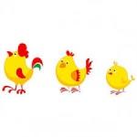 Les p'tites poules
