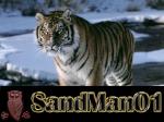 SandMan01
