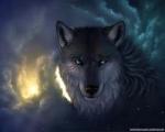 nataliawolf