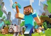 Minecraft          531795849