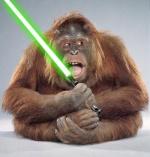 Monkey123