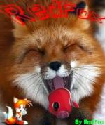 RedFoxXx