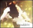 Ptitelili54