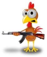 poulet11