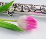 Flute22