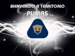 pumas1234full