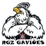 RGZ GAVIÕES 08