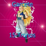 Garcete™