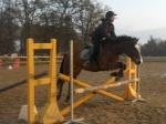 xBon-poney