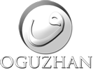 Oguzhan