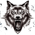 wolf80