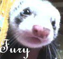 fury73