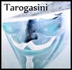 Tarogasini