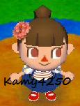 Kamy4250