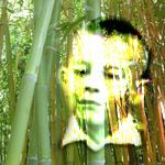bamboujl