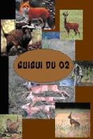 guiguidu02