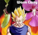 warm_carny