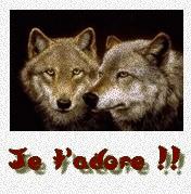 eths evolution& les loups Jtd