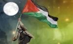 صقر فلسطين 1052-53