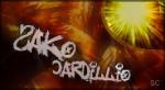 Sako Cardillio