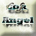 Dj angel in the mix