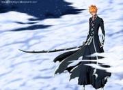 Ichigo Elfman Luffy D Ace