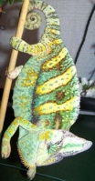 Ô-reptiles