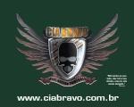 Marcelo Cia Bravo