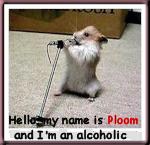 PLOOM