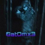 gatomx3