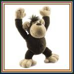 Mono Higuera